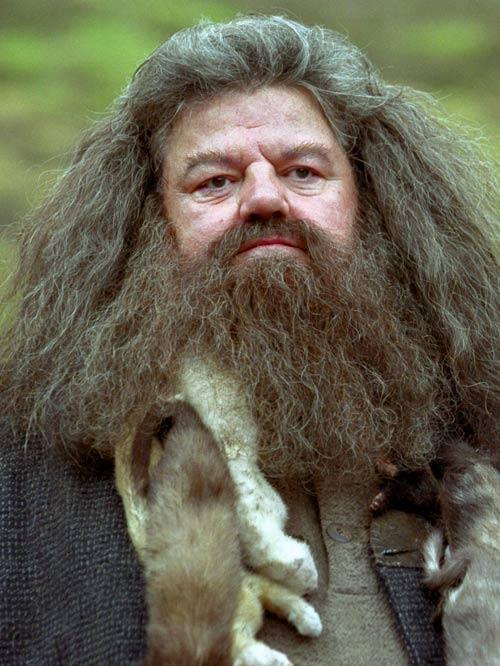 Rubeus Hagrid Harry Potter Team Name