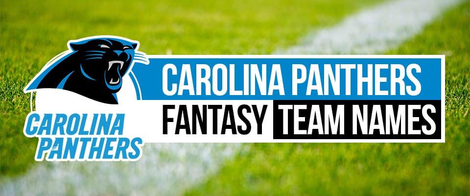 Panthers Fantasy Football Names